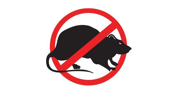 Leicester Based Pest Control Company